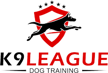 K9 League Dog Training Keller, TX