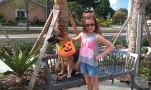 Kona's Dog Training Tempe, Arizona 85282 (480) 254-7701